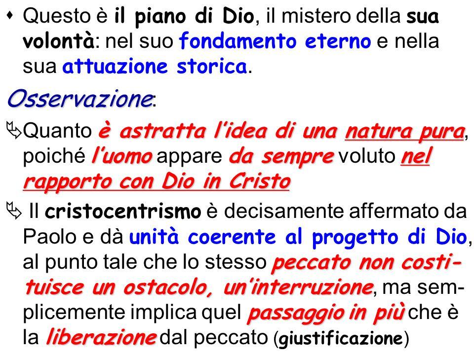 Questo è il piano di Dio, il mistero della sua volontà: nel suo fondamento eterno e nella sua attuazione storica.