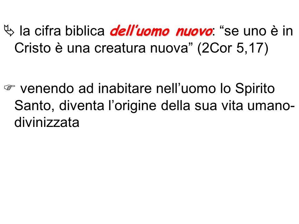  la cifra biblica dell'uomo nuovo: se uno è in Cristo è una creatura nuova (2Cor 5,17)