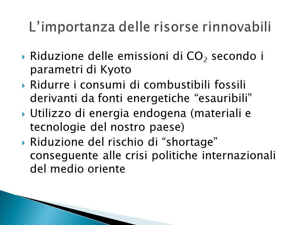 L'importanza delle risorse rinnovabili