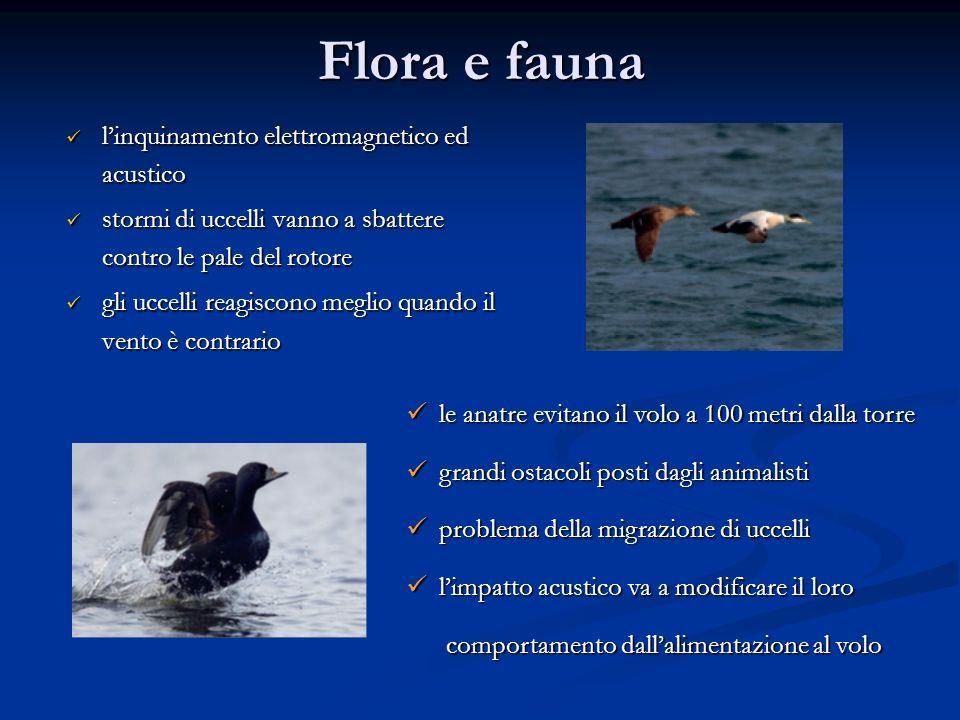 Flora e fauna l'inquinamento elettromagnetico ed acustico