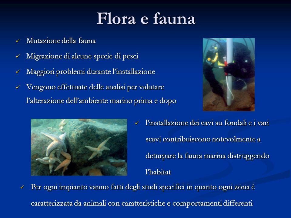 Flora e fauna Mutazione della fauna
