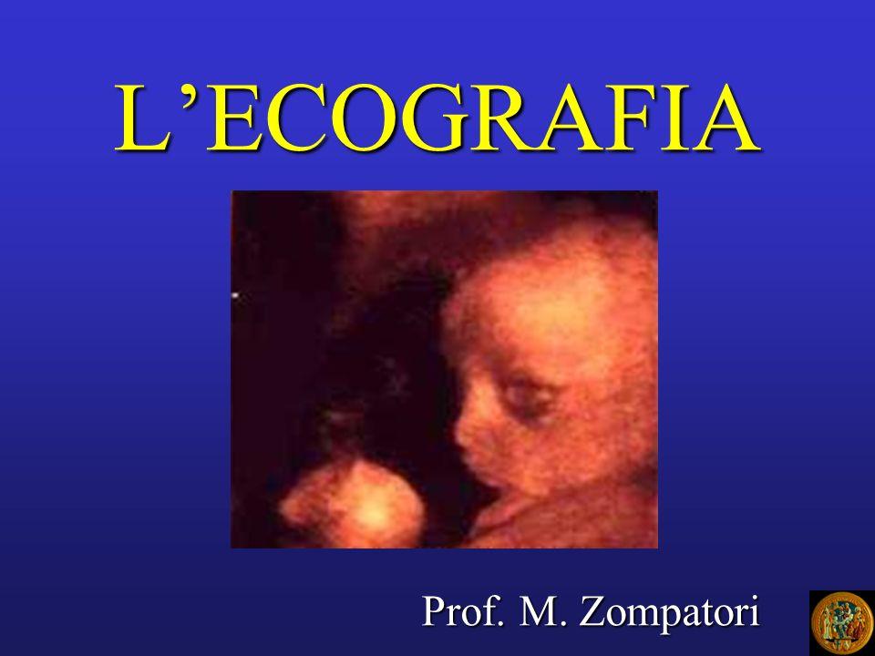 L'ECOGRAFIA Prof. M. Zompatori