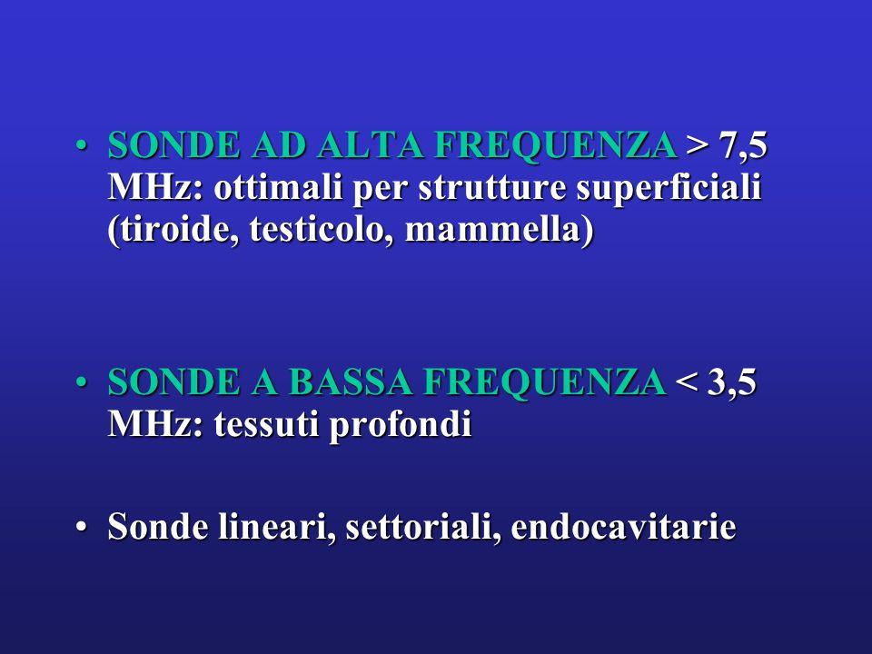 SONDE AD ALTA FREQUENZA > 7,5 MHz: ottimali per strutture superficiali (tiroide, testicolo, mammella)