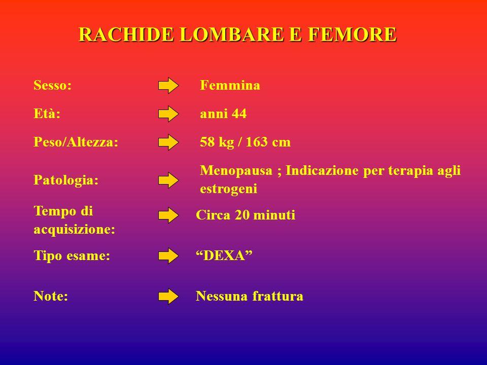 RACHIDE LOMBARE E FEMORE