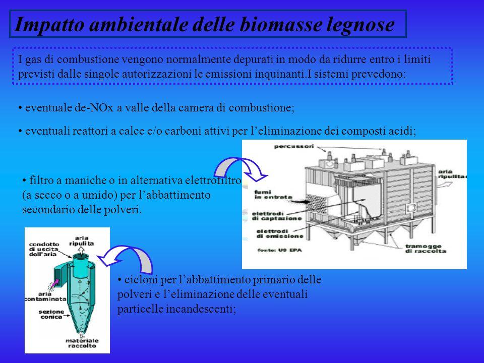 Impatto ambientale delle biomasse legnose