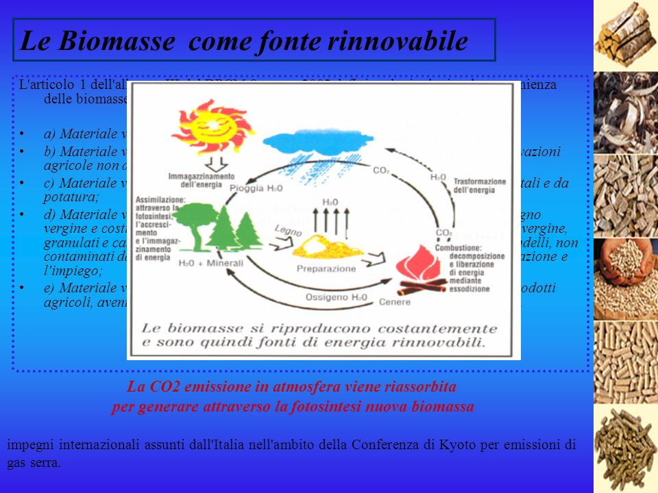 Le Biomasse come fonte rinnovabile