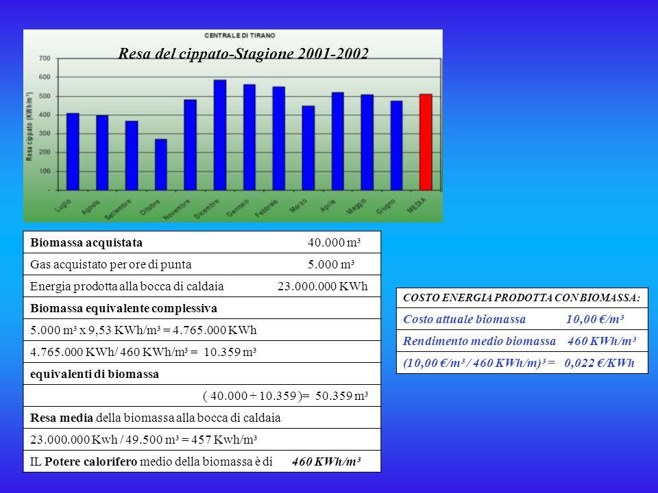 Resa del cippato-Stagione 2001-2002