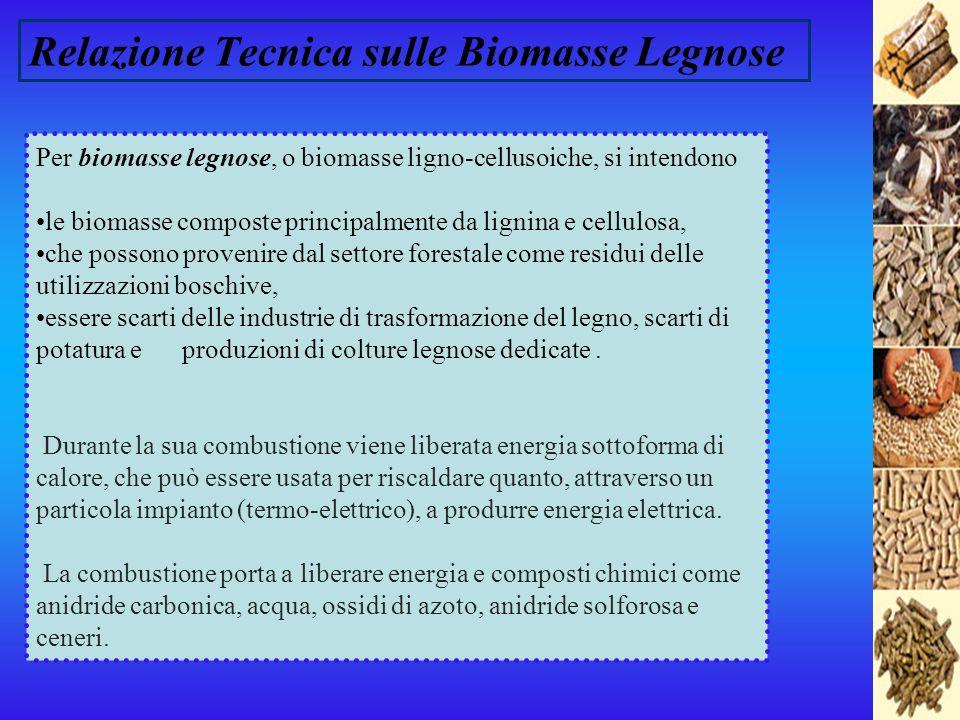 Relazione Tecnica sulle Biomasse Legnose