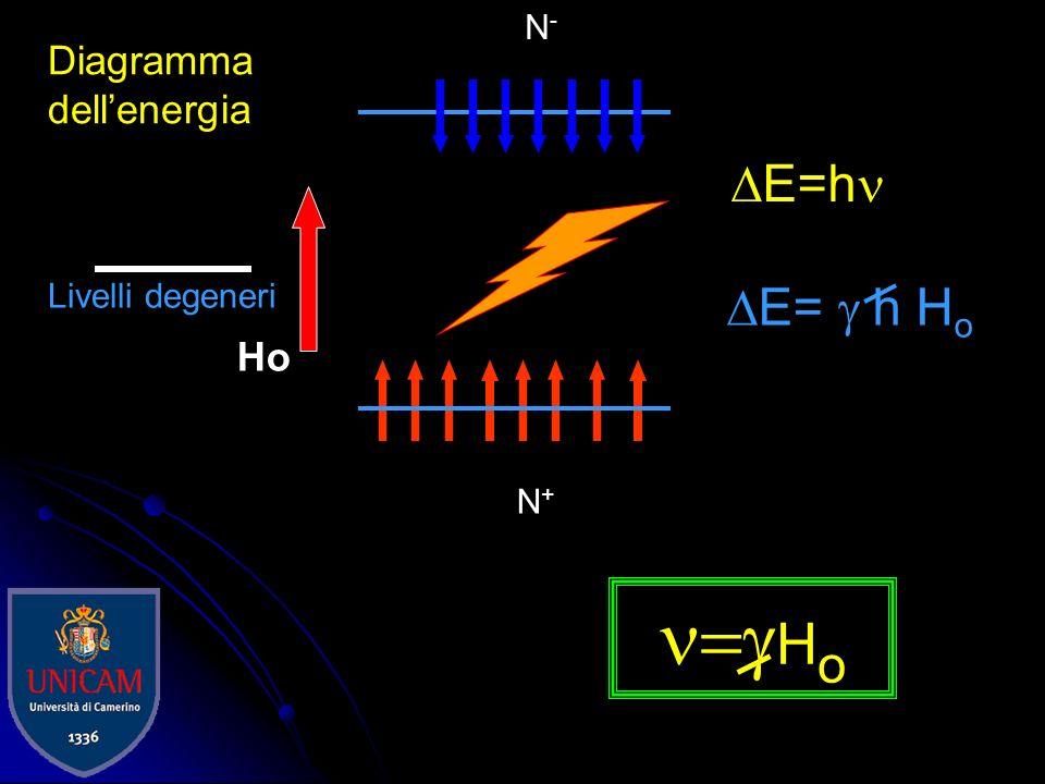 n=gHo DE=hn DE= g h Ho N-/N+=e-DE/kT Diagramma dell'energia Ho N-
