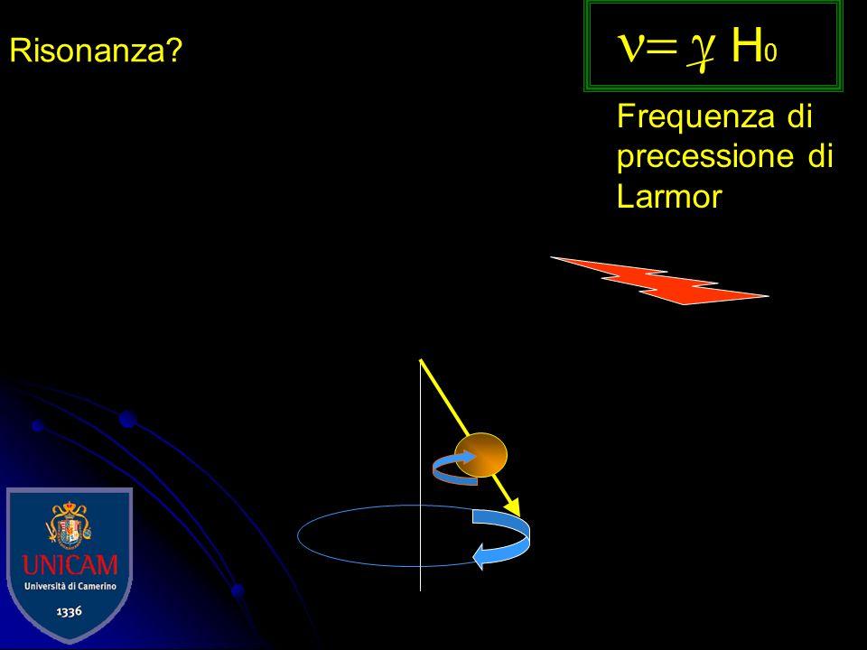 = g H0 Frequenza di precessione di Larmor Risonanza H0