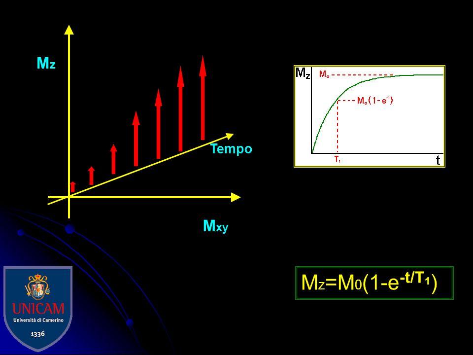 Mxy Tempo Mz Mz=M0(1-e-t/T1)