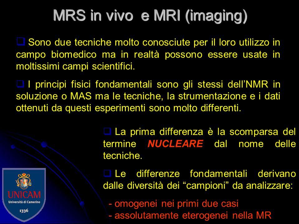 MRS in vivo e MRI (imaging)