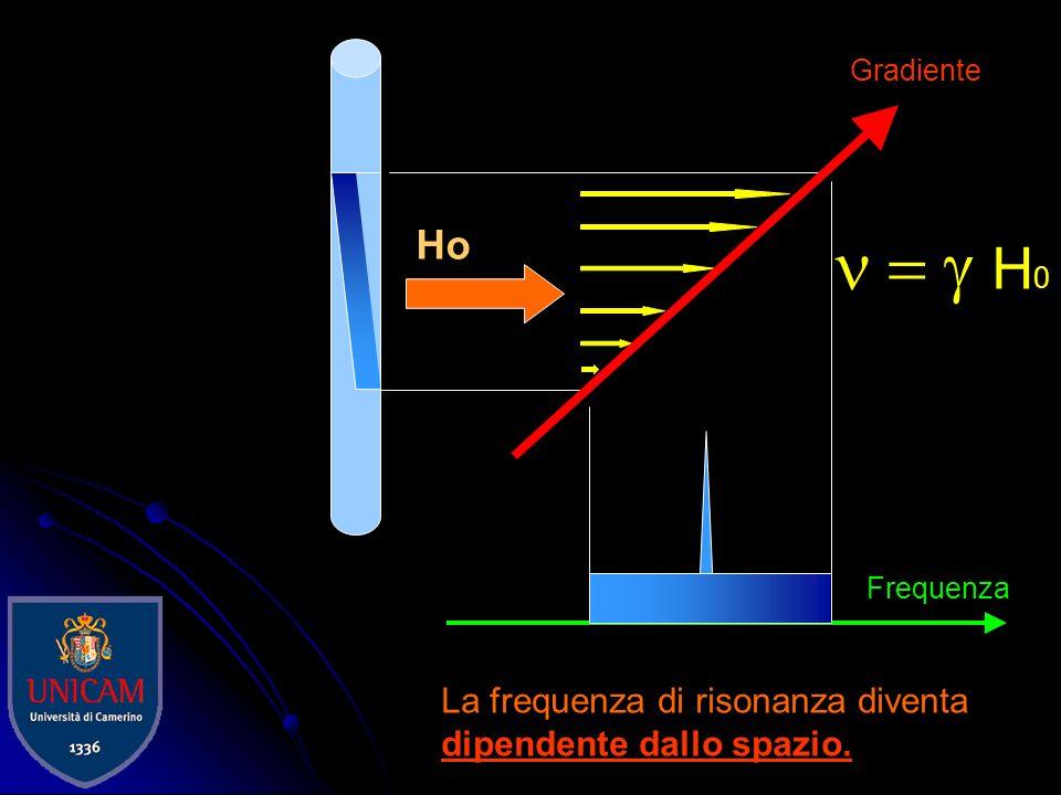 n = g H0 Ho La frequenza di risonanza diventa dipendente dallo spazio.