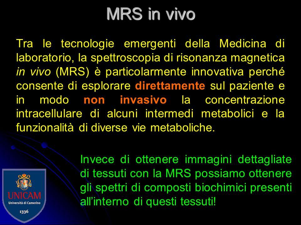 MRS in vivo
