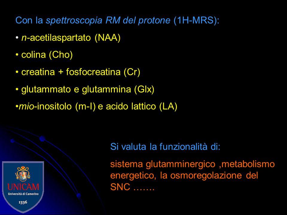 Con la spettroscopia RM del protone (1H-MRS):