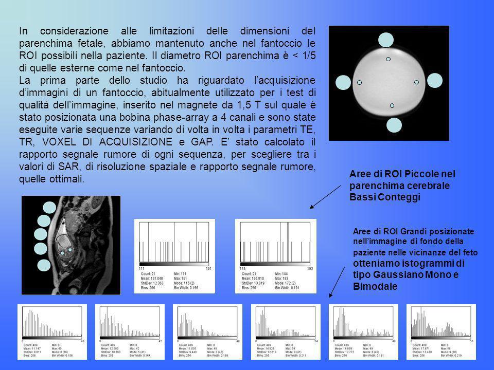 In considerazione alle limitazioni delle dimensioni del parenchima fetale, abbiamo mantenuto anche nel fantoccio le ROI possibili nella paziente. Il diametro ROI parenchima è < 1/5 di quelle esterne come nel fantoccio.