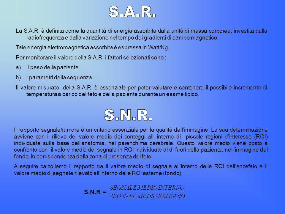 S.A.R.