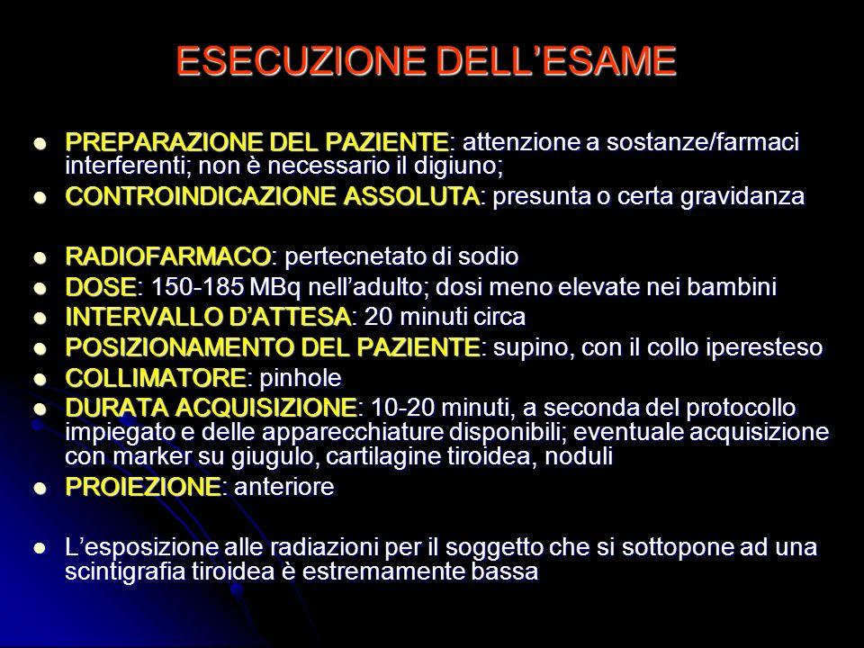 ESECUZIONE DELL'ESAME