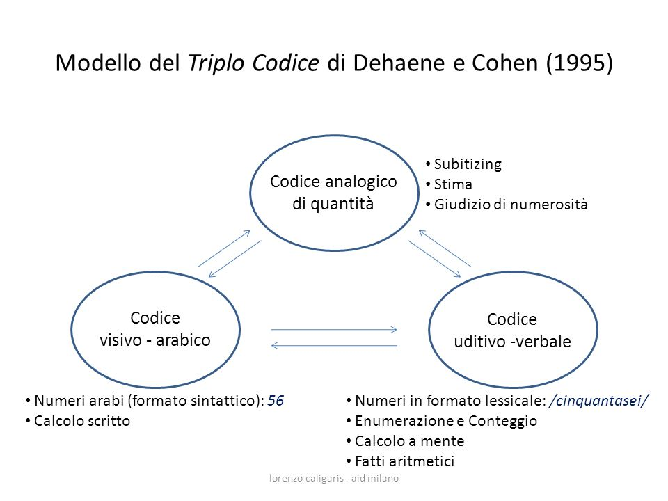 Modello del Triplo Codice di Dehaene e Cohen (1995)