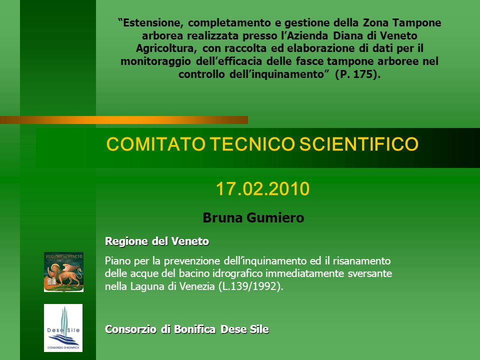 COMITATO TECNICO SCIENTIFICO 17.02.2010