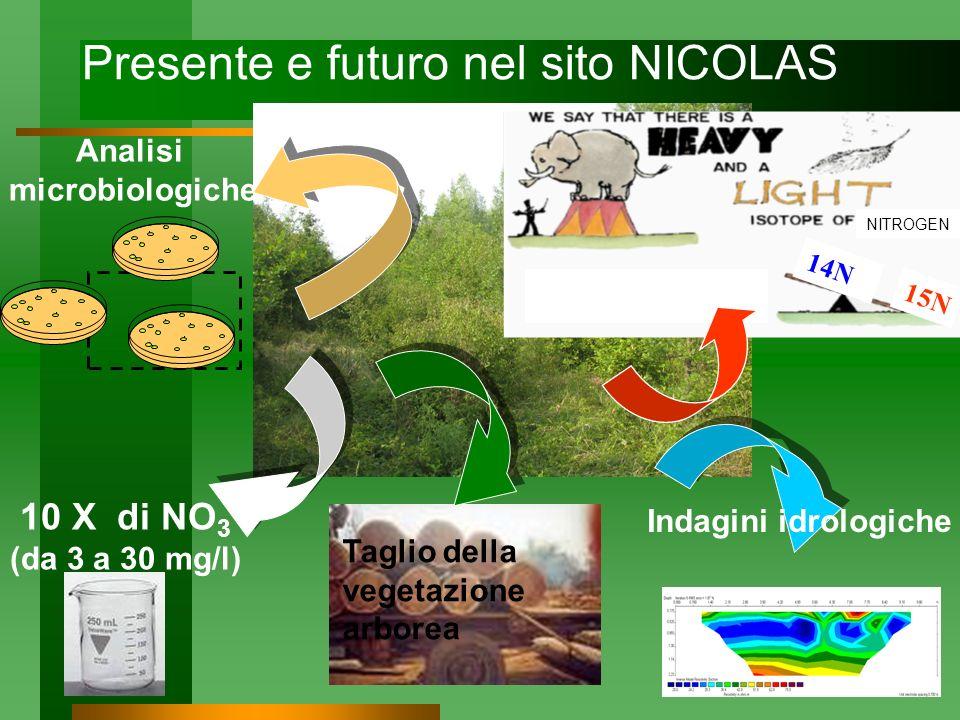 Presente e futuro nel sito NICOLAS
