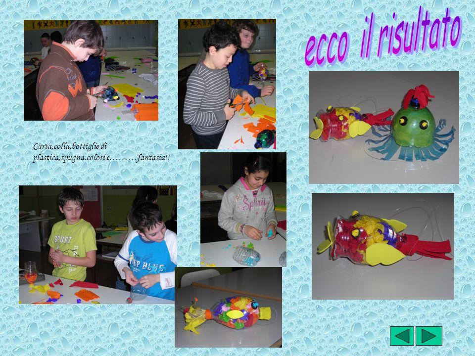 ecco il risultato Carta,colla,bottiglie di plastica,spugna.colori e………fantasia!!