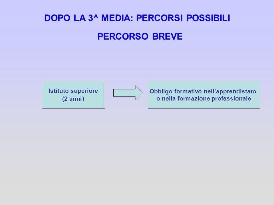 DOPO LA 3^ MEDIA: PERCORSI POSSIBILI