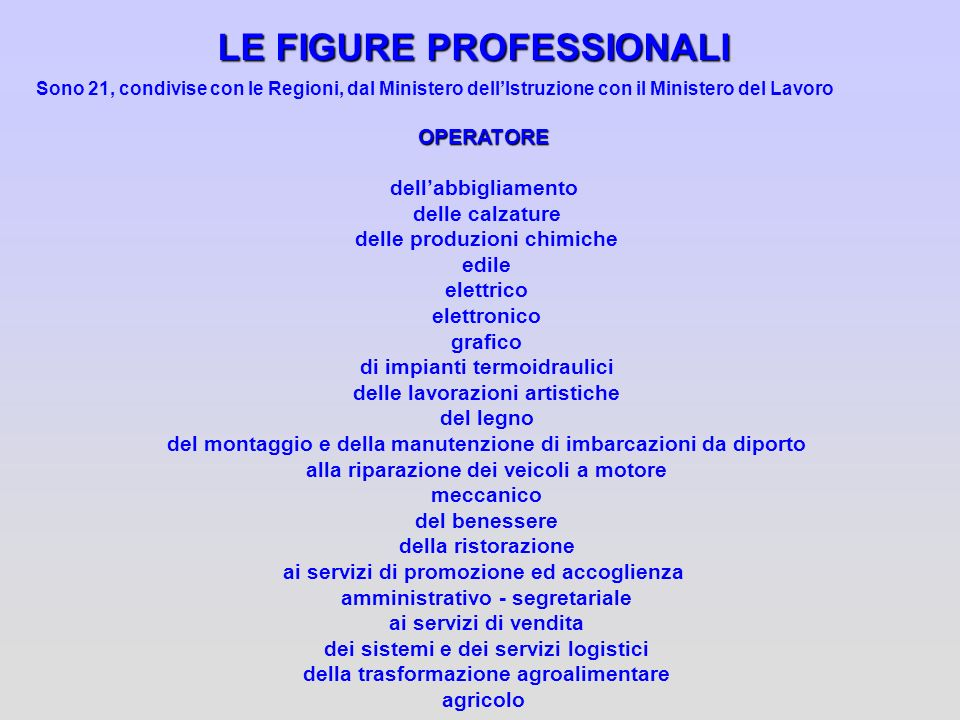 LE FIGURE PROFESSIONALI