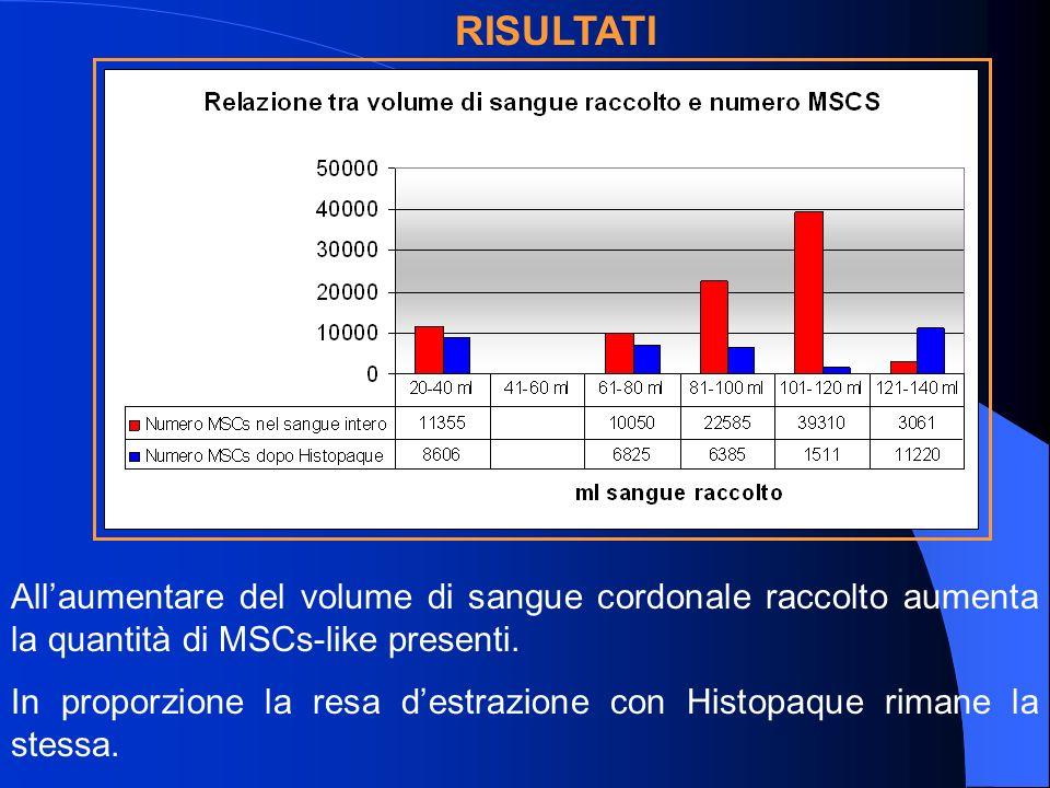 RISULTATI All'aumentare del volume di sangue cordonale raccolto aumenta la quantità di MSCs-like presenti.