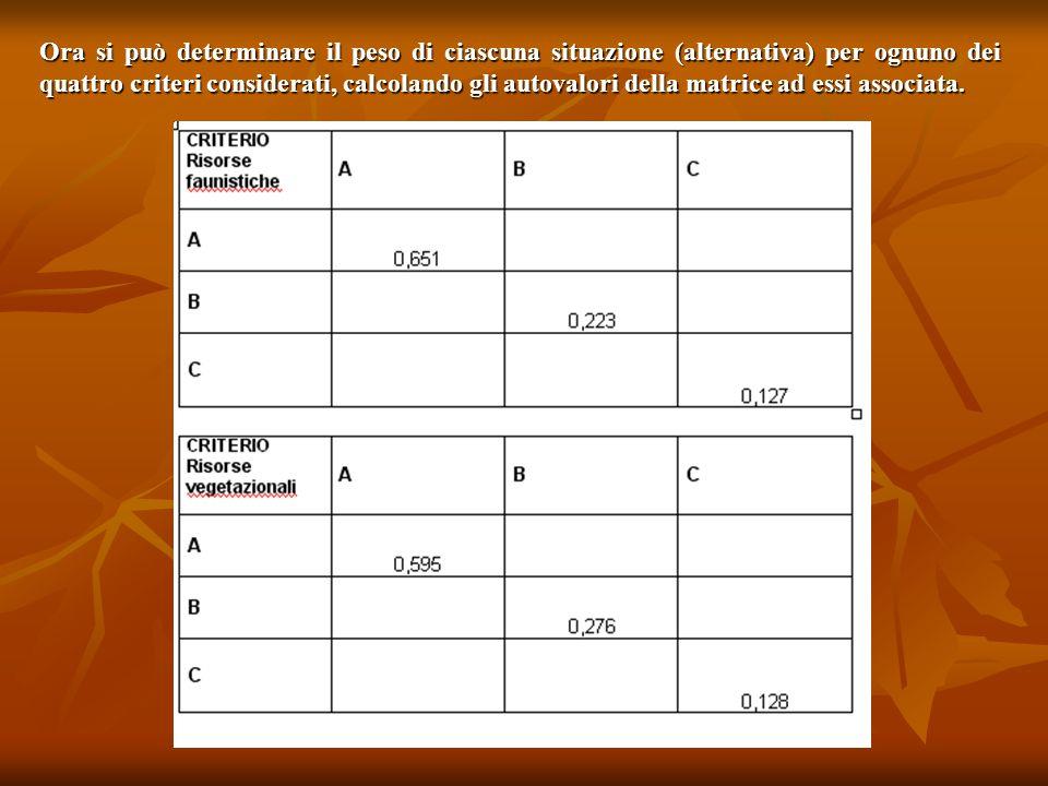 Ora si può determinare il peso di ciascuna situazione (alternativa) per ognuno dei quattro criteri considerati, calcolando gli autovalori della matrice ad essi associata.