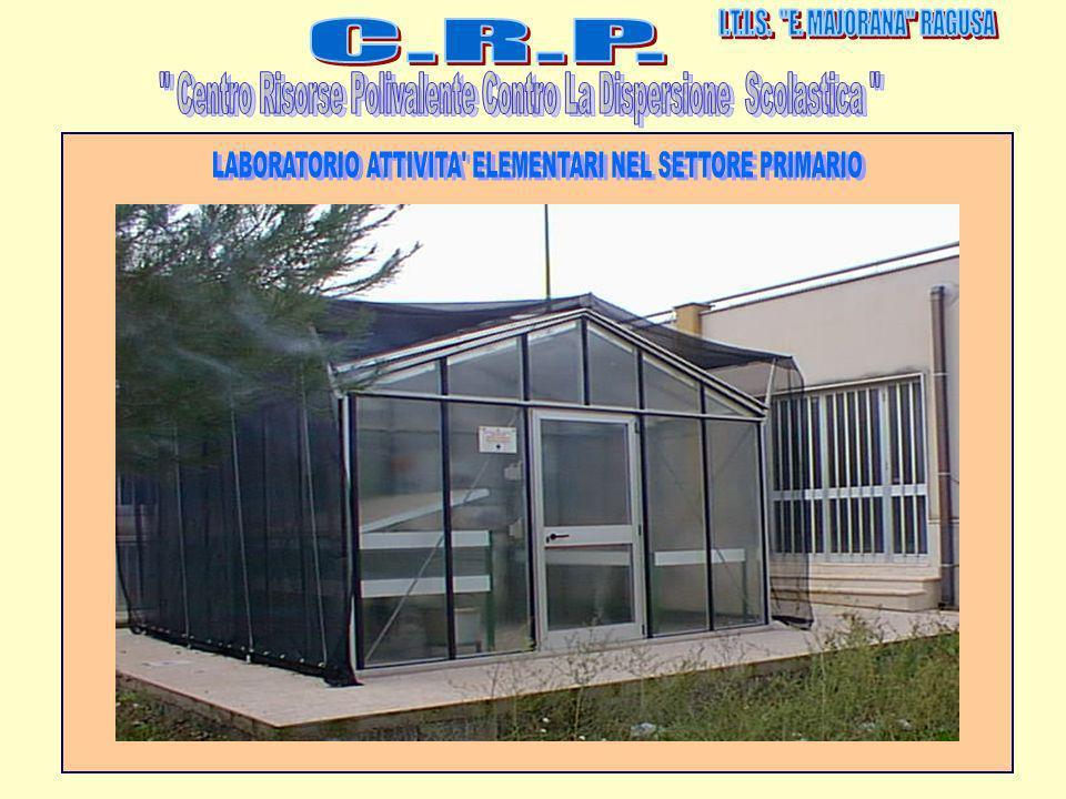 Centro Risorse Polivalente Contro La Dispersione Scolastica