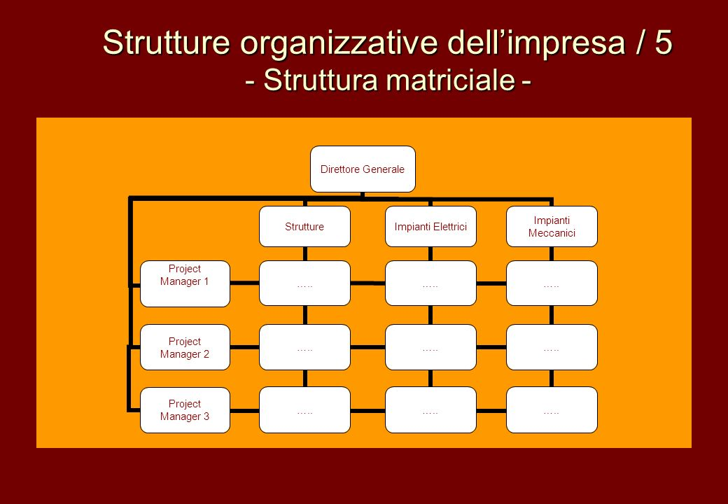 Strutture organizzative dell'impresa / 5 - Struttura matriciale -