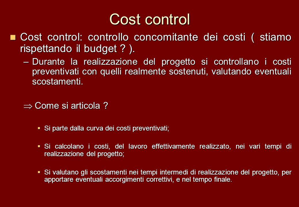 Cost control Cost control: controllo concomitante dei costi ( stiamo rispettando il budget ).
