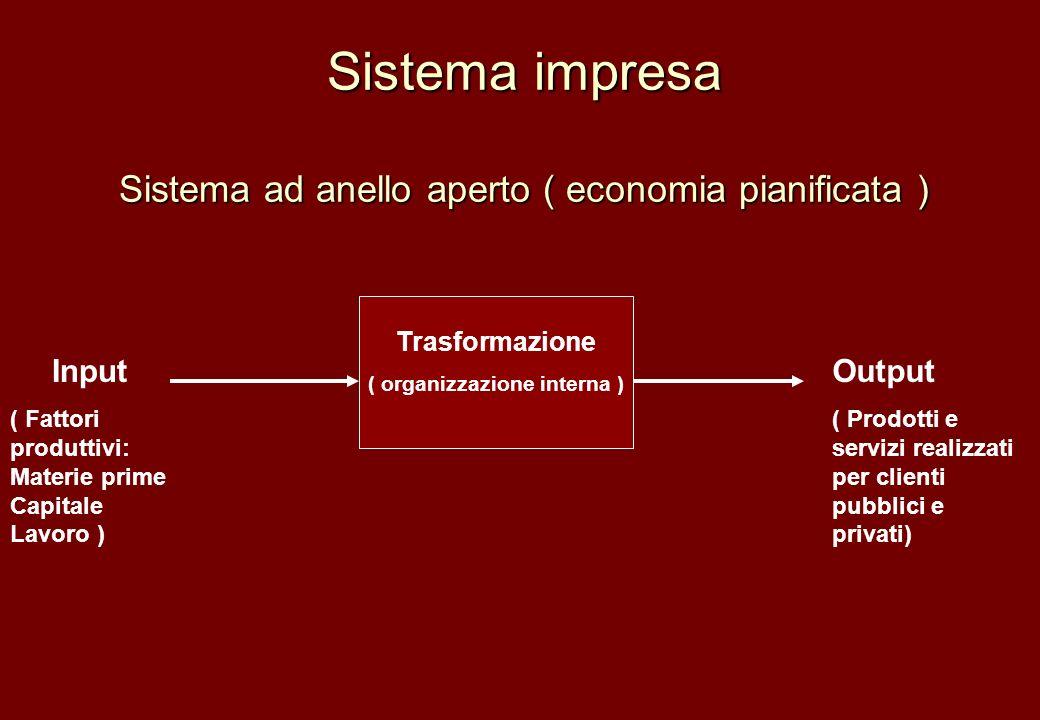 Sistema impresa Sistema ad anello aperto ( economia pianificata )