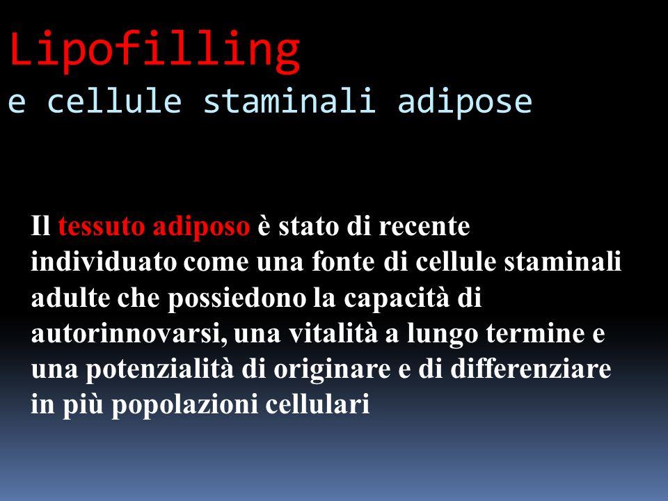 Lipofilling e cellule staminali adipose