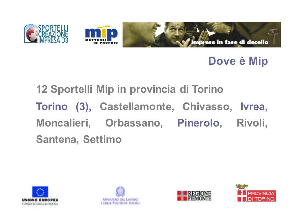 Dove è Mip 12 Sportelli Mip in provincia di Torino