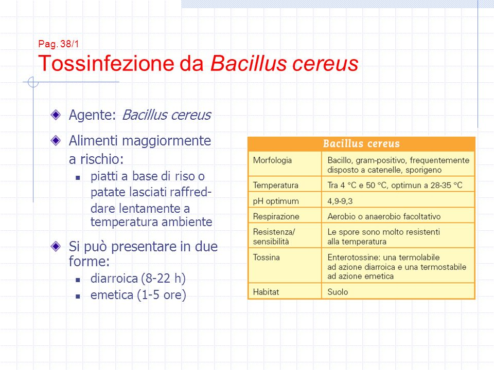 Pag. 38/1 Tossinfezione da Bacillus cereus