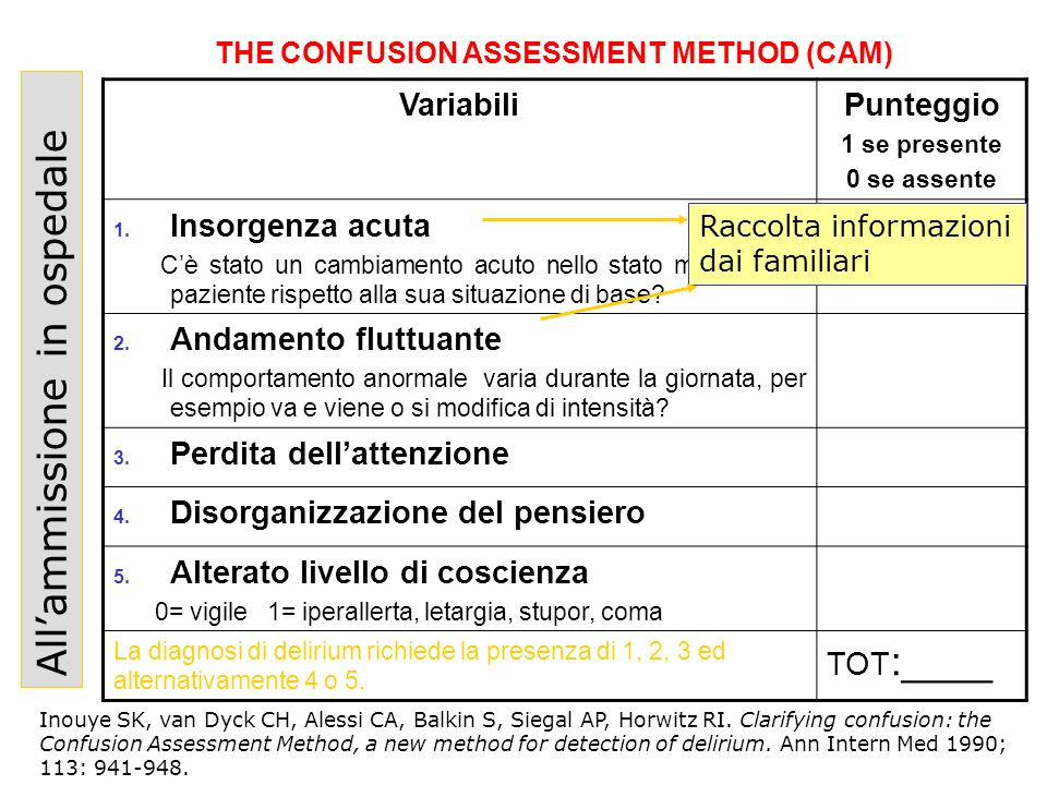 THE CONFUSION ASSESSMENT METHOD (CAM)