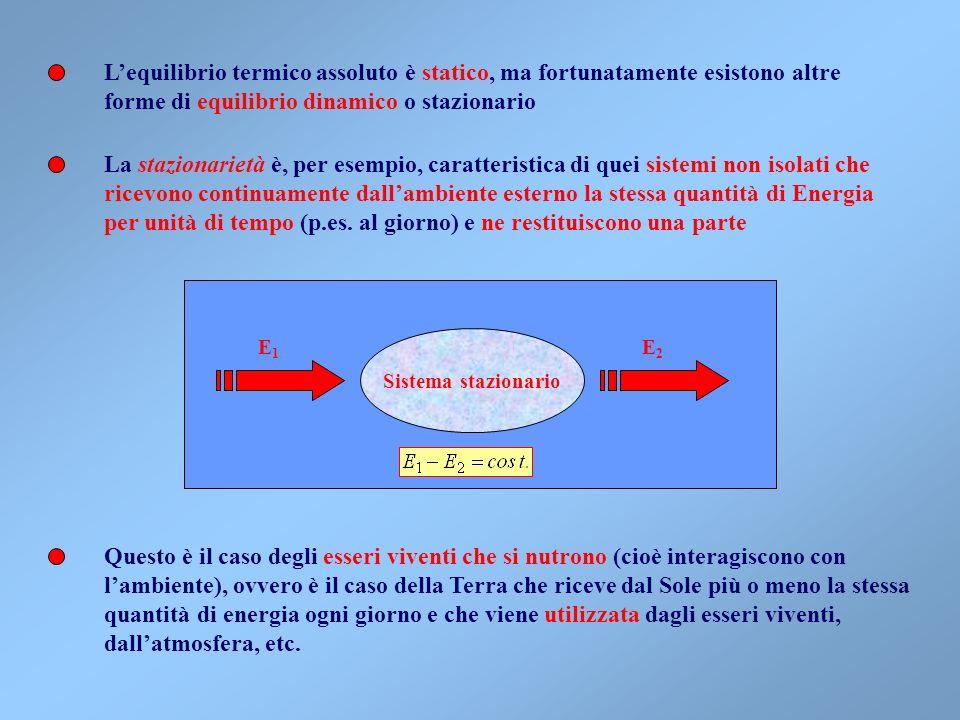 forme di equilibrio dinamico o stazionario