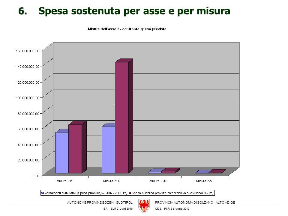 6. Spesa sostenuta per asse e per misura