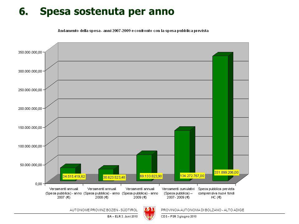 6. Spesa sostenuta per anno
