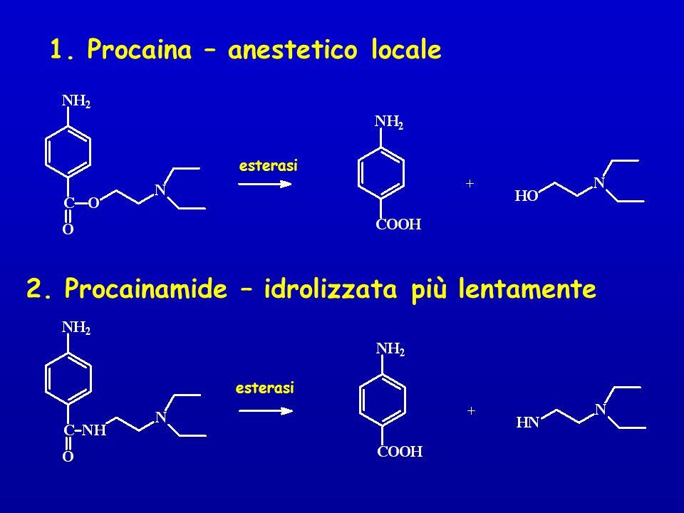 1. Procaina – anestetico locale