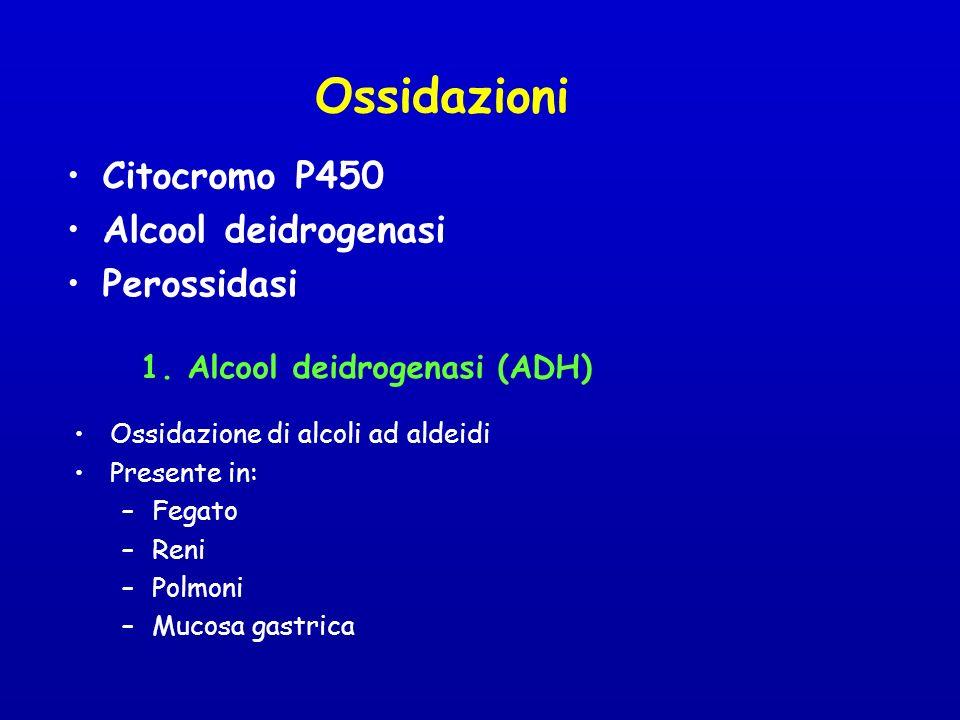 1. Alcool deidrogenasi (ADH)