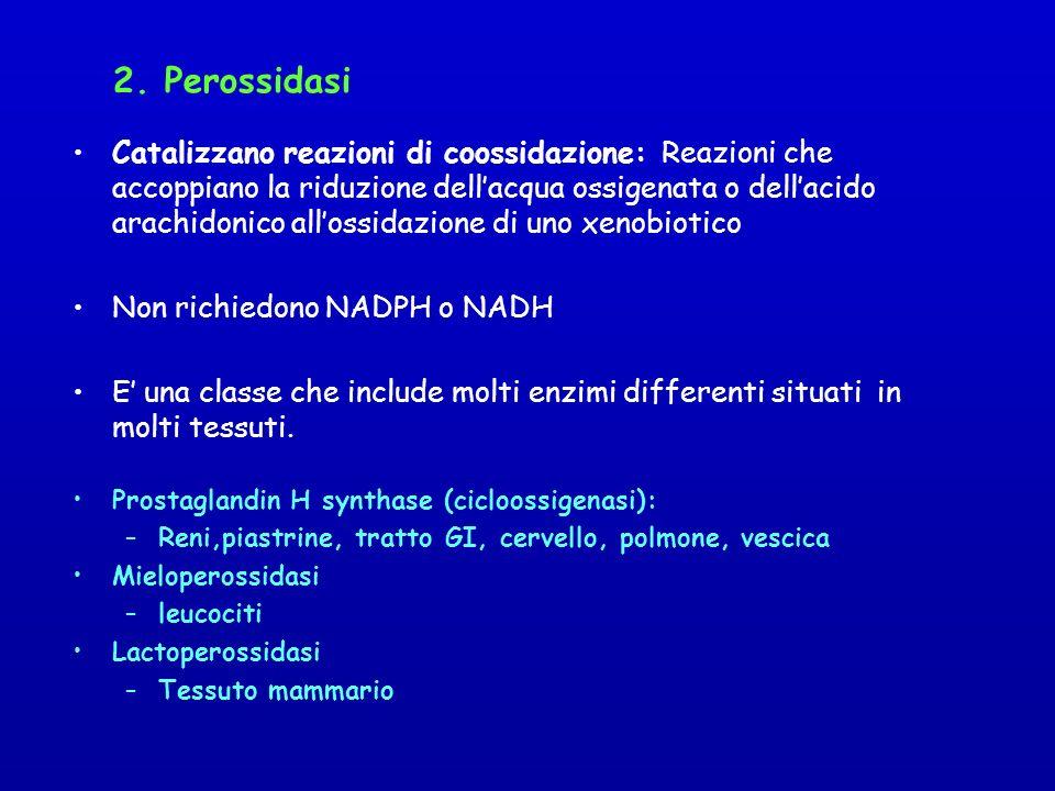 2. Perossidasi