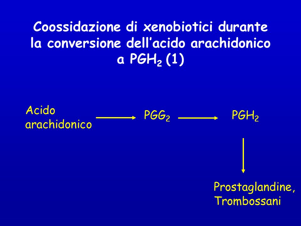 Coossidazione di xenobiotici durante la conversione dell'acido arachidonico a PGH2 (1)
