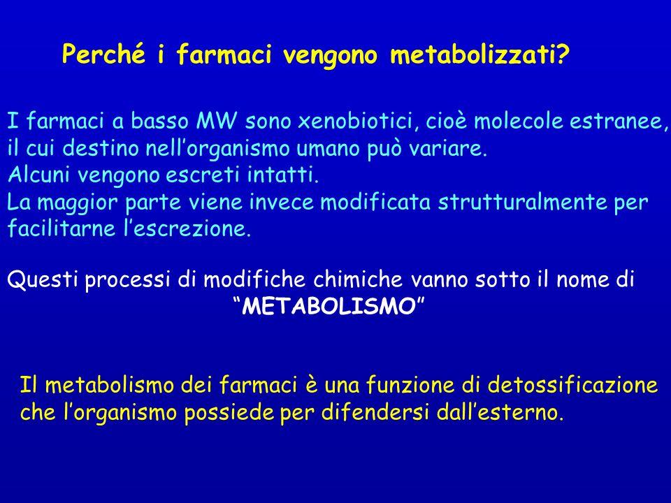 Perché i farmaci vengono metabolizzati