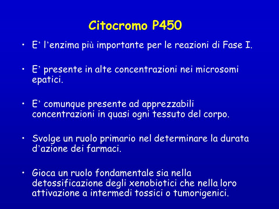 Citocromo P450 E' l'enzima più importante per le reazioni di Fase I.