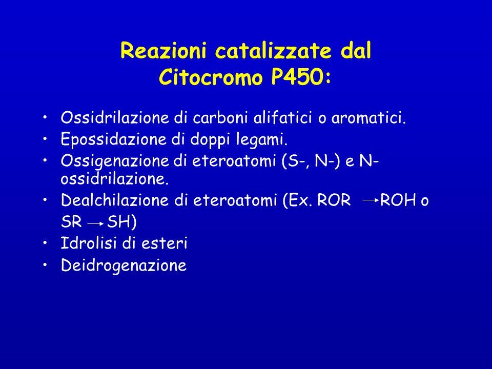 Reazioni catalizzate dal Citocromo P450: