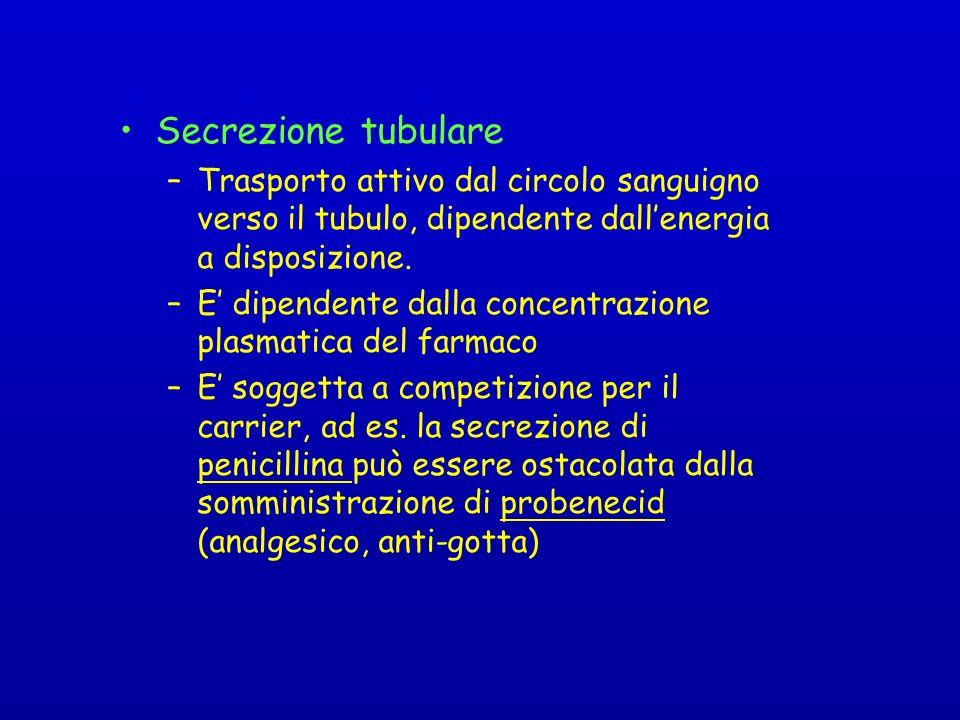 Secrezione tubulare Trasporto attivo dal circolo sanguigno verso il tubulo, dipendente dall'energia a disposizione.