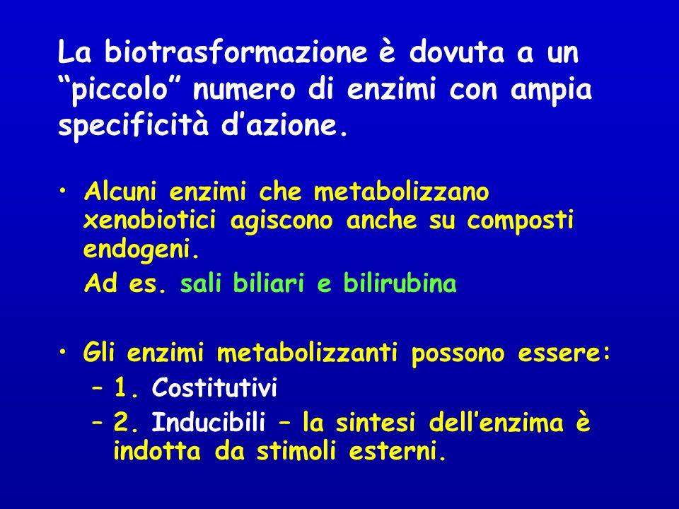 La biotrasformazione è dovuta a un piccolo numero di enzimi con ampia specificità d'azione.